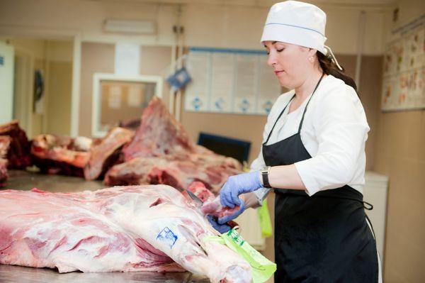 проведение ветеринарно-санитарной экспертизы мяса