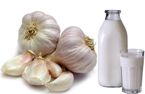 чеснок и молоко против паразитов