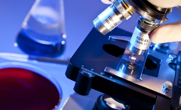 Диагностические тесты на паразитов