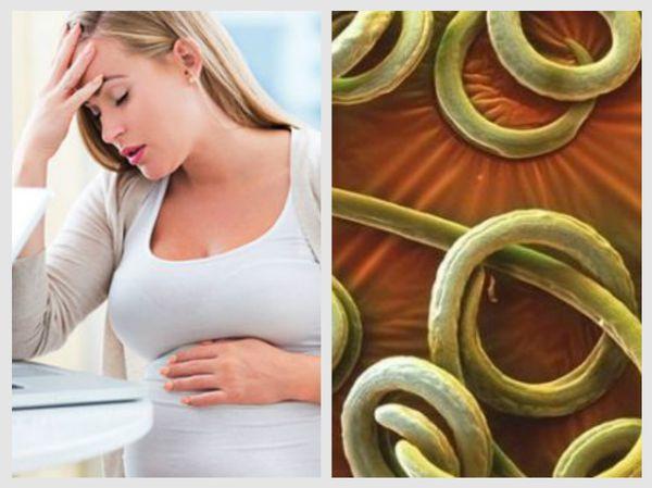 Попадание паразитов в организм человека