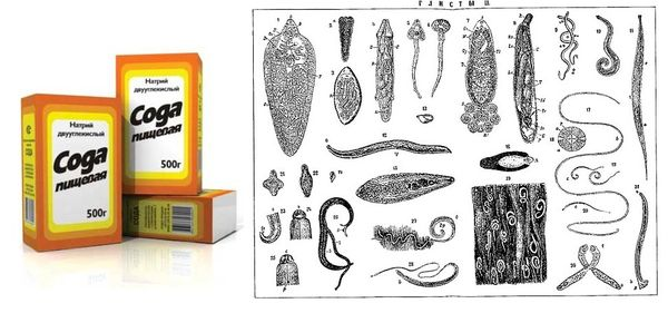 Сода против паразитов в организме