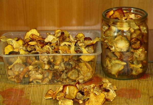 Домашние рецепты из лисичек