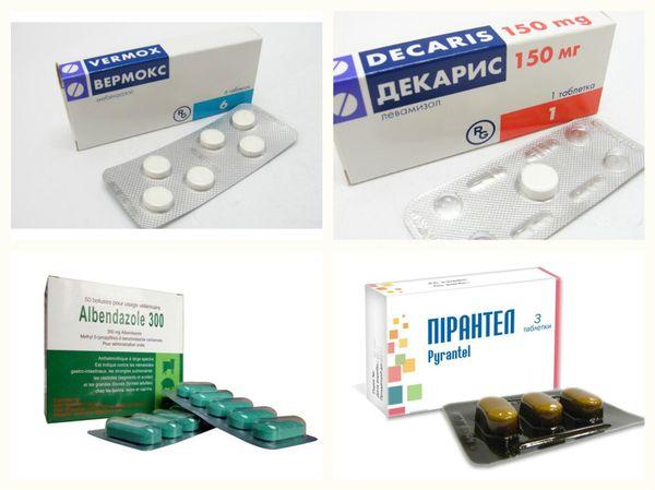 Антигельминтные препараты