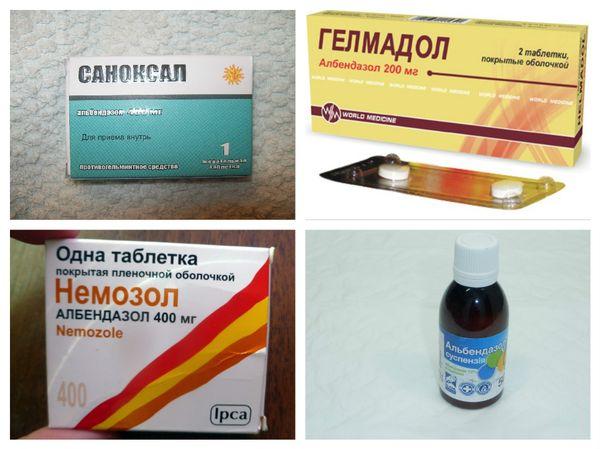 Препараты от гельминтозов разных видов
