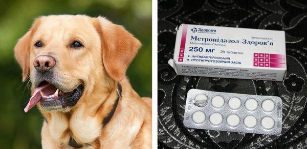 Фармакологические свойства Метронидазола