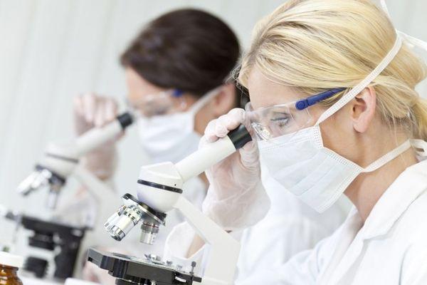 исследование крови через микроскоп