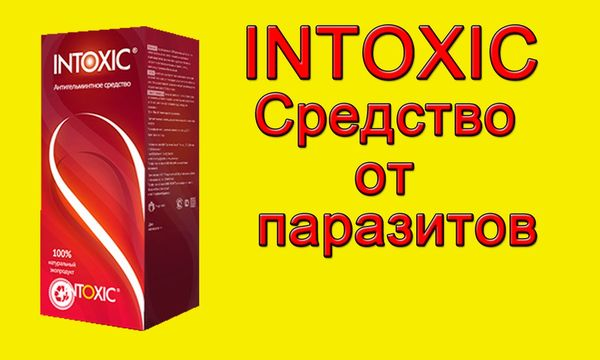 эффективность препарата интоксис