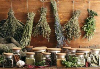 Рецепты народной медицины для лечения описторхоза