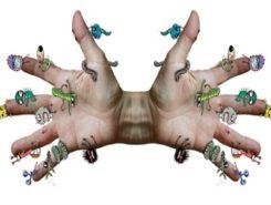 Разновидности паразитов человека