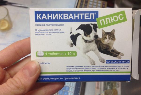 какие таблетки можно дать собаке от аллергии